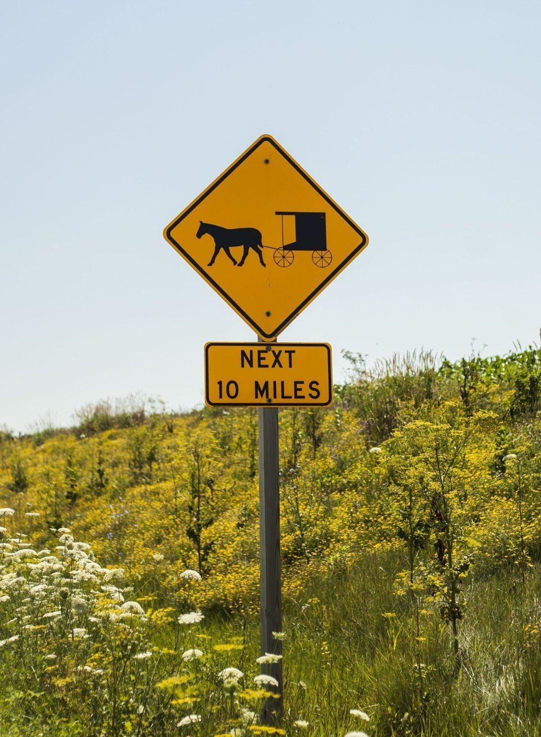 Amish next 10 miles