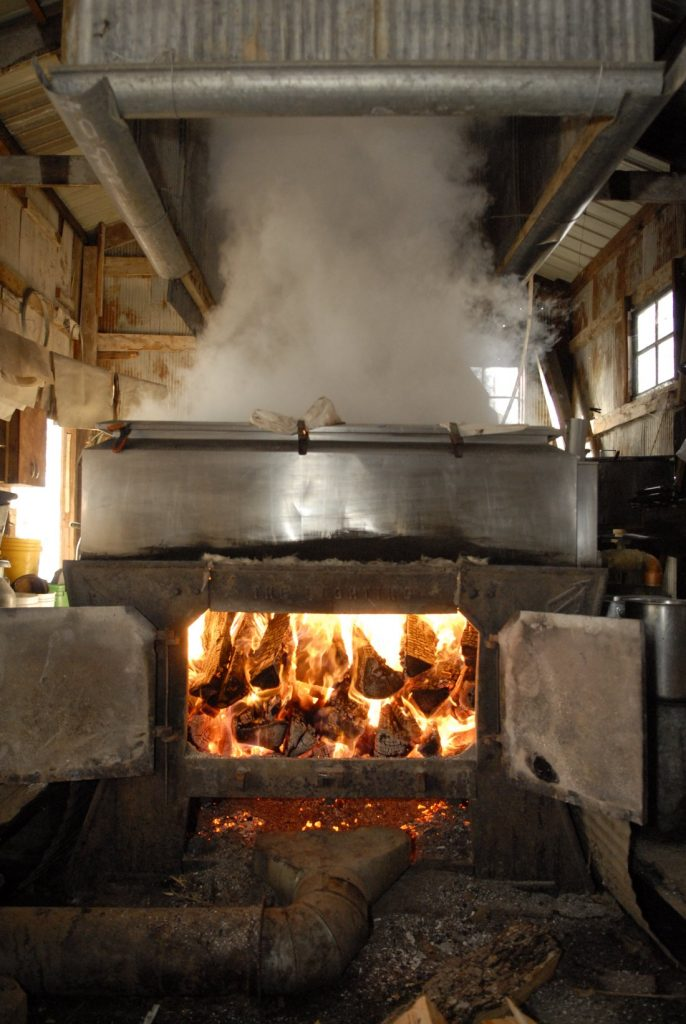 Boiling to make Organic Maple Syrup