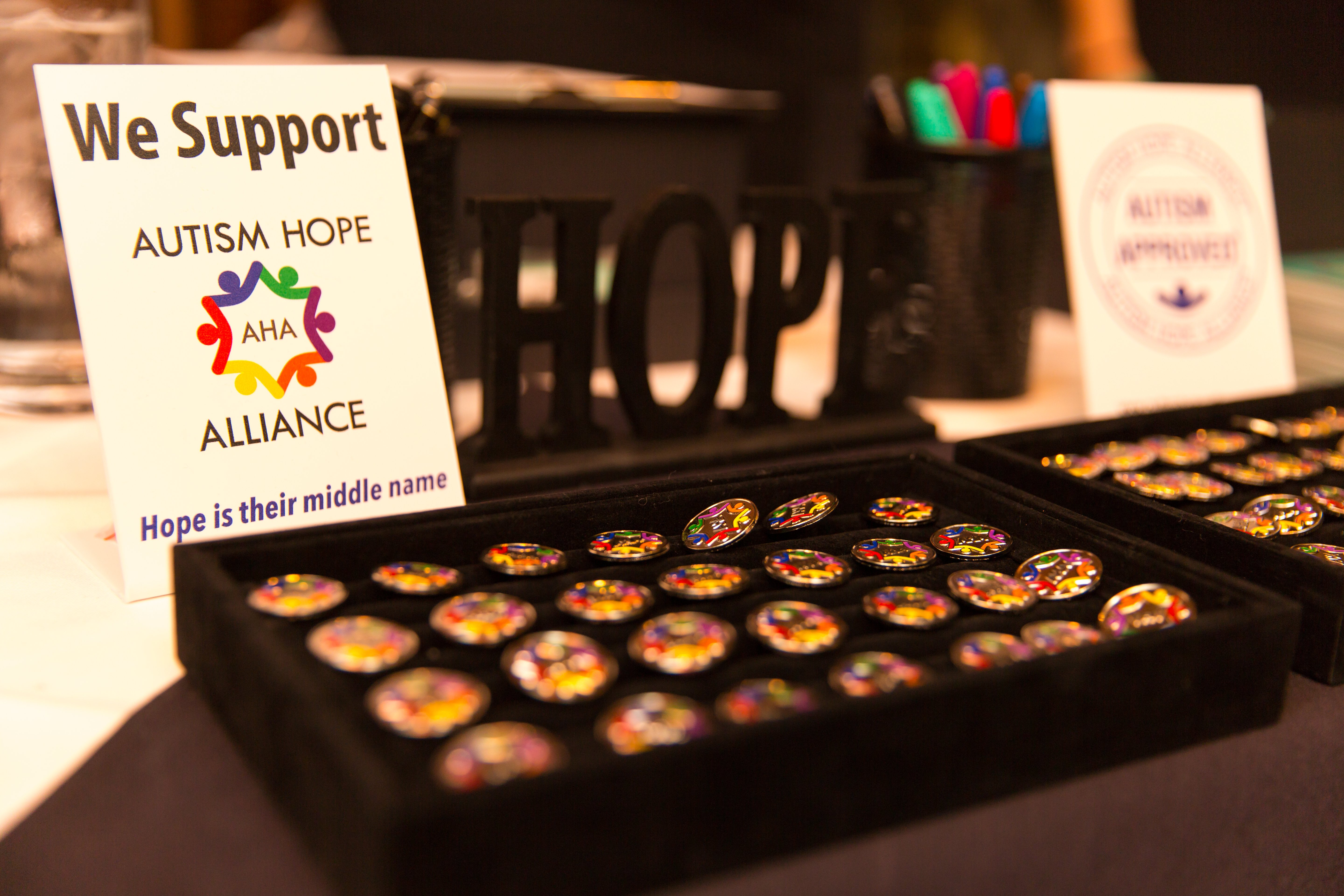 Photo of our Autism Approved sign and our pins at our annual partner mixer