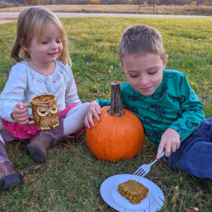 healthy maple syrup energy bar snack for kids recipe pumpkin bars