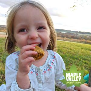 Maple Pumpkin Breakfast Energy Bar Recipe Easy Quick Healthy Snack Kids